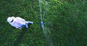 3-Quick-Tips-on-How-To-Keep-Your-Lawn-Green