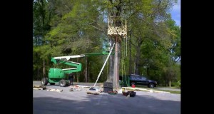 Construction-of-a-totally-suspended-green-treehouse-25-high