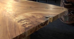 Eco-Friendly-Wood-Dining-Table-Green-Furniture-Eco-Modern-Dining-Tables