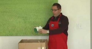 Green-Business-Features-Starch-Packing-Peanuts