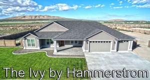Hammerstrom-Construction-The-Ivy-Lisa-Green