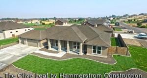 Hammerstrom-Construction-The-Olive-Leaf-Lisa-Green