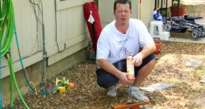 Home-Improvement-Repair-Tips-How-to-Use-a-Paint-Stripper