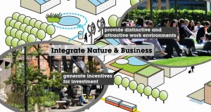 Invest-in-Green-Infrastructure