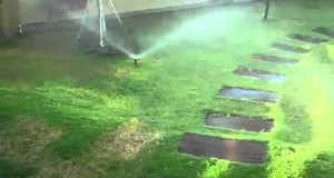 SMALL-RADIUS-POP-UP-SPRINKLER-BY-GROW-GREEN-IRRIGATION