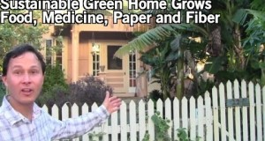 Sustainable-Green-Home-Grows-Food-Medicine-and-Fiber