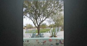 Tucson-Green-Homes-Green-Housing-Features