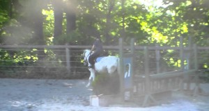 **Sold** Dougie- Small Green Pony For Sale